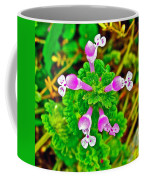 Henbit At Chickasaw Village Site At Mile 262 Of Natchez Trace Parkway-mississippi Coffee Mug