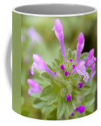 Henbit Coffee Mug