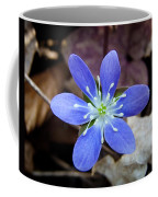 Hepatica Blue Coffee Mug