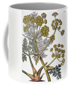 Herbal: Fennel, 1819 Coffee Mug