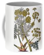 Herbal: Fennel, 1819 Coffee Mug