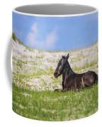 Herd 41 Coffee Mug