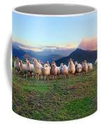 Herd Of Sheep In The Sunset Coffee Mug