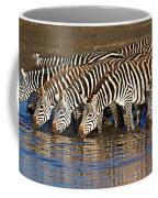 Herd Of Zebras Drinking Water Coffee Mug