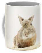 Here I Am Coffee Mug