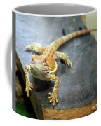 Here Lizard Lizard Coffee Mug