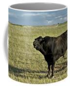 Hereford Bull Coffee Mug