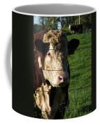 Hereford  Coffee Mug