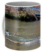 Heron With Ducks Coffee Mug