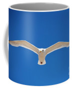 Herring Gull In Flight Coffee Mug
