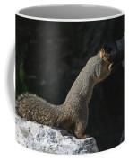 Hey Anybody Home? Coffee Mug