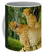 Hey Bro - Do You See What I See? Coffee Mug