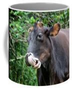 Hey Look What I Found Coffee Mug