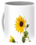 Hi Key Sunflower Coffee Mug