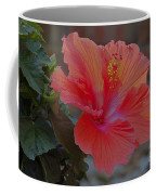 Hibiscus 1 Coffee Mug