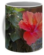 Hibiscus 2 Coffee Mug