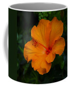Hibiscus 9 Coffee Mug