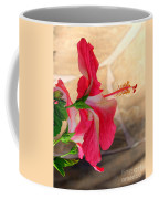 Hibiscus Along The Walk Way Coffee Mug
