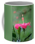 Hibiscus Ballerina Coffee Mug