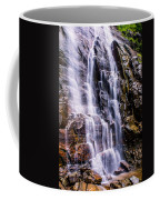 Hickory Nut Falls Coffee Mug