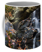 Hidden Falls 1 Coffee Mug