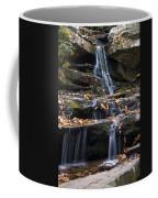 Hidden Falls 3 Coffee Mug
