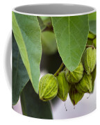 Hidden Fruit Coffee Mug
