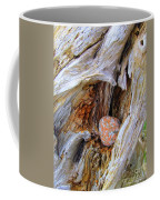 Hidden Surprise Coffee Mug