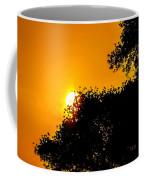 Hide N Seek Coffee Mug