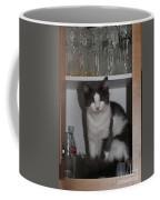Hiding In The Cabinet Coffee Mug