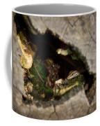 Hiding. Montorfano. Cologne Coffee Mug