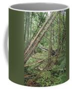 Higgins Lake Coffee Mug