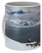 High Angle View Of A Harbor, Neko Coffee Mug