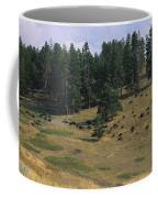 High Angle View Of Bisons Grazing Coffee Mug