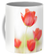 High Key Tulips Coffee Mug