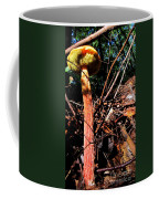 High Rise Fungi Coffee Mug