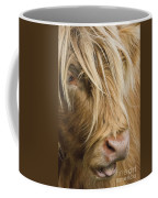Highland Cow Portrait Coffee Mug