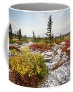 Highlands Of West Virginias Dolly Sods Coffee Mug