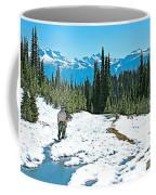 Hiking In Spring In Revelstoke National Park-british Columbia  Coffee Mug