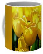 Hill Of Golden Tulips Coffee Mug