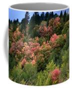 Hill Side Colors Coffee Mug