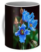 Himalayan Blue Poppy Flower Coffee Mug