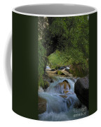 Himalayan Nectar... Coffee Mug