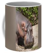 Hippo Hair 1 Coffee Mug