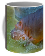Hippo Taking A Plunge Coffee Mug