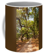 Historic Lane Coffee Mug by Steve Harrington