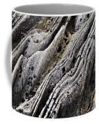 History Of Earth 11 Coffee Mug