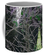 Hoars Frost-featured In Nature Photography Group Coffee Mug