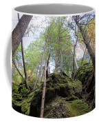 Hocking Hills Moss Covered Cliff Coffee Mug