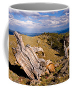 Hoe-down At The Top Of The World Coffee Mug